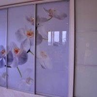 прямой шкаф купе 3 двери фотопечать орхидеи