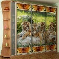 трехдверный шкаф-купе с фотопечатью тигр