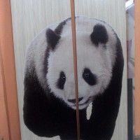 печать на ЛДСП панда