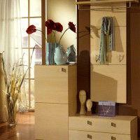 дизайн шкафов в прихожую