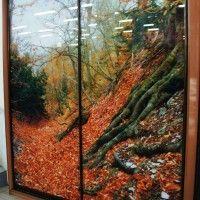 фотопечать на шкафах купе осень