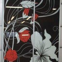 двухдверный черный шкаф купе фотопечать красно-белые цветы