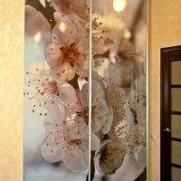 прямой шкаф-купе 2 двери фотопечать сакура