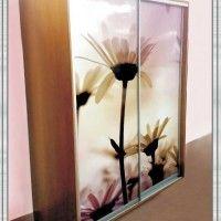 прямой шкаф-купе 2 двери фотопечать цветы