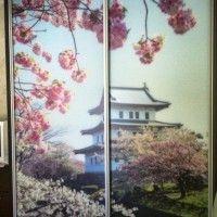 прямой двухдверный шкаф фотопечать сакура